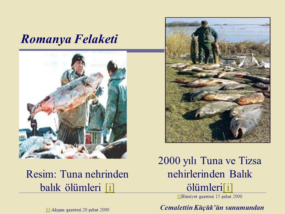 Romanya Felaketi 2000 yılı Tuna ve Tizsa nehirlerinden Balık ölümleri[i] [i]Hürriyet gazetesi 15 şubat 2000.